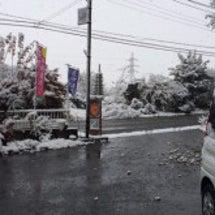雪( ^ω^ )