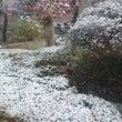 初雪ですね⛄。。。