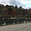 ★京都の紅葉2日目★
