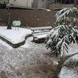 ゆき ユキ 雪  ❄…