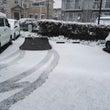 雪のため本日の営業は…