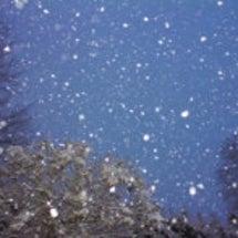ちょっと早い初雪