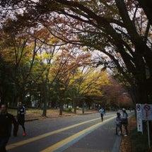 駒沢公園にて距離走