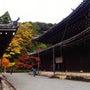 京都 泉涌寺 今熊野…