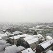 ビックリな初雪とあれ…