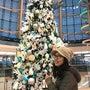 クリスマスツリーハン…