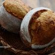 ホシノ酵母のライ麦ク…