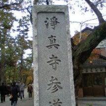 九品仏 浄真寺の紅葉