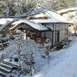 ひと足早い雪景色