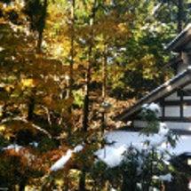雪と紅葉のコントラス…