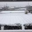 11月でまさかの雪!…