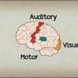 演奏することで脳にど…