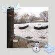 雪とSAKURA