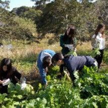 自然環境基礎演習(2…