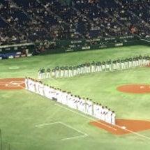 またまた野球観戦