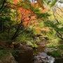 名古屋 白鳥庭園