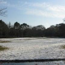 雪の次の日は