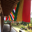 京都お寺巡り。
