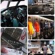 関東秋の旅4・JAL…
