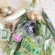 ネットで野菜〜