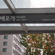 女二人酔いどれ韓国旅…