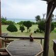 沖縄のパパラギ王国