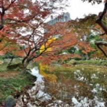 東京・日比谷公園の秋