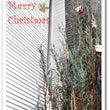 クリスマスツリーへの…