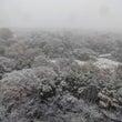 54年ぶりの積雪から…