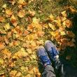 秋から冬へ