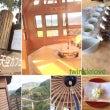 日本遺産和束町茶畑景…