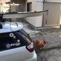 亀山湖紅葉ツーリング