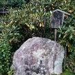 関西 京都 大原 宝…