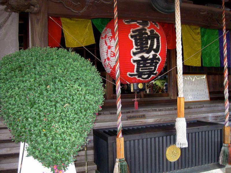 20161027 Todoroki Fudoson 2