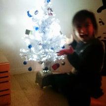 クリスマスツリーと京…