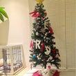 クリスマスシーズン到…