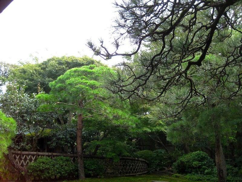 20161021 Inomata Garden 9