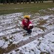 たまに雪!