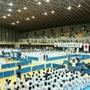 日本空手道連盟選手権…
