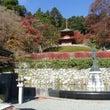 タイタン ~勝尾寺へ…