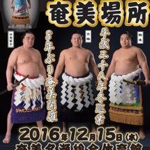 大相撲 奄美場所!!…