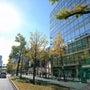 11月ラストは大阪の…