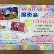 ★★WanWan撮影…