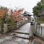 2016秋の京都 金…