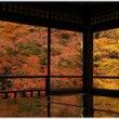 そうだ、京都に行こう…