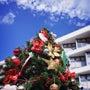 南国のクリスマス