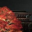 税理士京都。金戒光明…