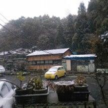 初雪と初タブレットの…