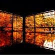 京都の紅葉2日目
