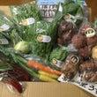 臼杵市の無農薬野菜が…